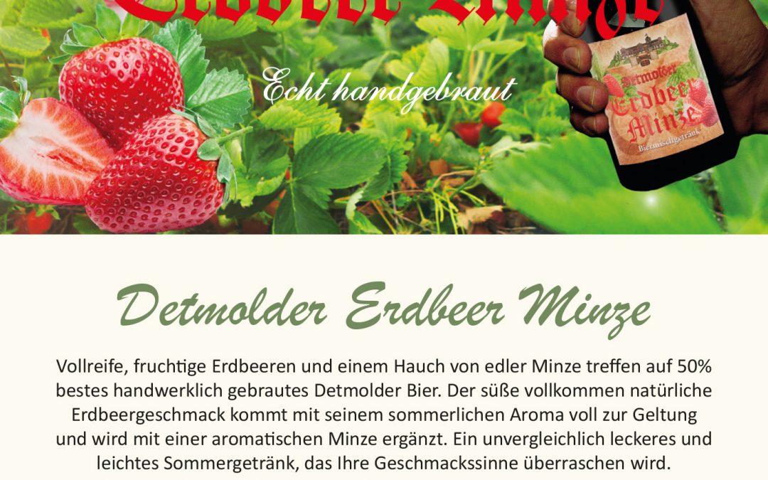 Steckbrief – Detmolder Erdbeer Minze
